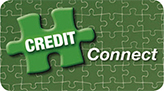 Flexible Financing with Credit Connect